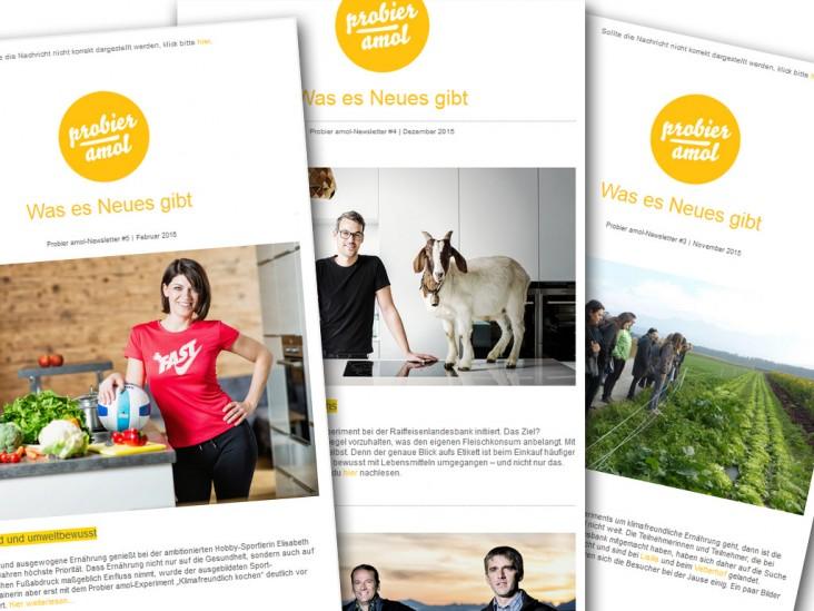 Probier amol Newsletterportfolio