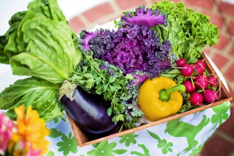 Probier amol... die Gemüsekiste